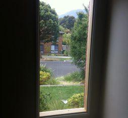 Timber Fixed Window 4